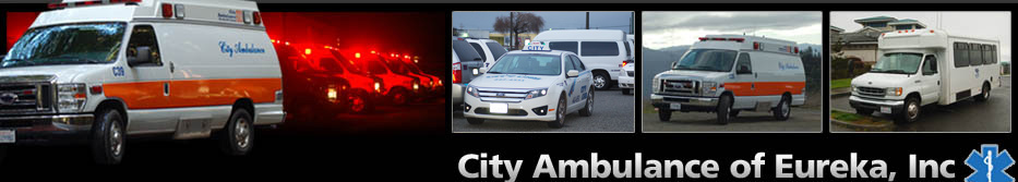 City Ambulance, City Cab, Dial-a-Ride